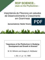 Importância do Filocrono em estudos de Desenvolvimento e Crescimento em Gramíneas - por Natalia Teixeira Schwab