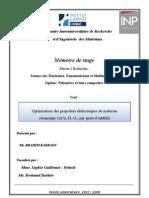 Page De Garde Rapport De Pfe 2