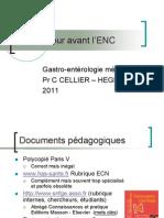 ECN D4 Gastro1 Cellier