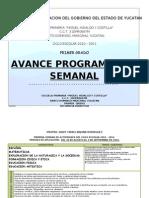 AVANCE PROGRAMATICO SEMANAL2