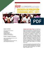 Instructivo y Resumen EPC 2011 Version PDF