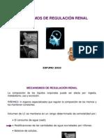 5 Mecanismos de regulación renal