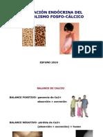 9. metabolismo fosfo-calcico 2
