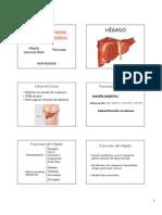 3 Hígado-Pancreas y Vesícula Biliar
