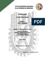 Fisiopatogenia nutri