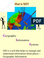 Gis Defined