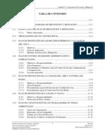 B74) Capitulo 11 - Programa de Prevencion y Mitigacion