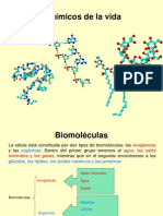 Quimica Celular