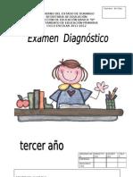 EXAMEN DIAGNÓSTICO 3° PRIMARIA