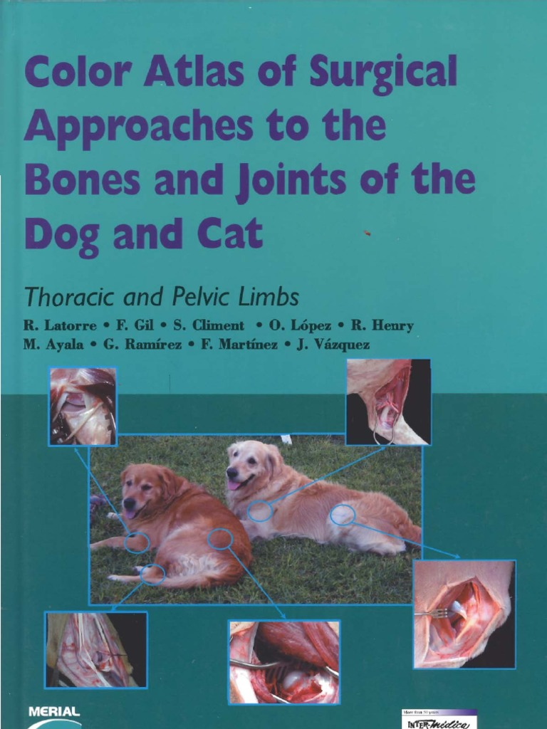 Color Atlas Of Surgical Approaches To The Bones And Joints Of The