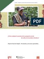 Final-Report Adapcc 17032010 Es