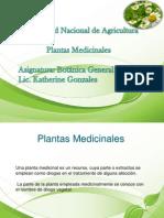 presentacion plantas medicinales