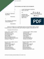 Developer judicial review petition