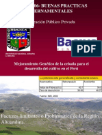 Mejoramiento Genético de la cebada para el desarrollo del cultivo en el Perú - GP