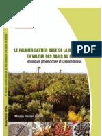 Le Palmier Dattier Base de La Mise en Valeur Des Oasis Au Maroc