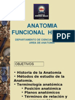 Clase General Ida Des Anatomia