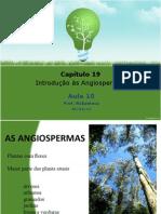 Aula 10 - Introdução às Angiospermas