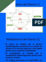 Alcohol Metab