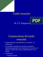 Clase Tejido Muscular Histología