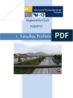 PUENTES ESTUDIOS PRELIMINARES