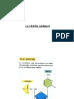 Clase Acidos Nucleicos Biología Celular