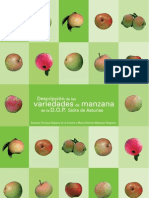 Descripcion de las variedades de manzana de sidra en Asturias
