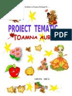 Proiect Tematic Toamna Nivel i