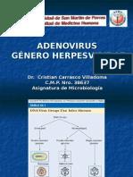 Virus Herpesviridae