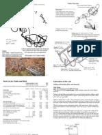 Bikecart Brief Sequential