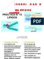 Practica N13