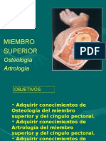 Clase Miembro Superior Anatomia