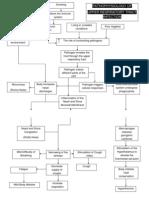 Pa Tho Physiology of URTI