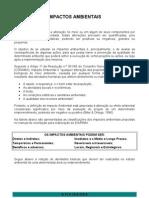 Apostila 1 - Analise de Impactos Ambientais