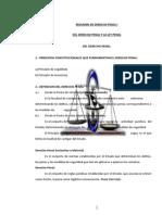 Derecho Penal y Procesal Penal-2