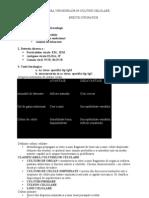 Izolarea Virusurilor in Culturi Celulare Lp1
