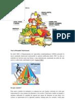 Piramide cia s. Nervioso y Hormonal