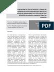 Evaluacion Del Tipo de Sutrato y Tiempo de Inmersion en Acido Indolbutirico (Aib) en La Capacidad de Arraigamiento de Estacas de Pino Romeron Retrophyllum Rospigliosii (Pilger) l