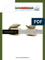 Free Turtle Guide