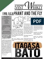 WHM Weekly Newletter - 18 September 2011