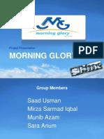 Morning Glory Slides