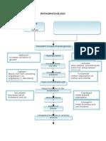 ACS pathophysiology