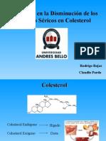 Exposición_Colesterol_Introducción a Bioquímica II