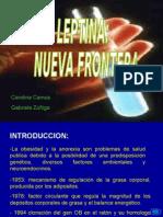 Exposición_Leptina_Introducción a Bioquímica II