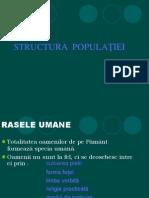 structurapopula_iei