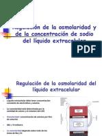 regulacinosmolaridadporelrion-090825160525-phpapp02