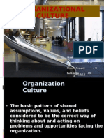 What is Organization Culture