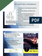 BM-PCR
