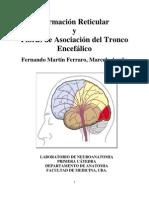 Formacion_reticular