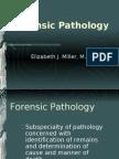 Forensic Pathology - Dr