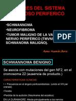 13 a Tumores Del Sistema Nervioso Periferico